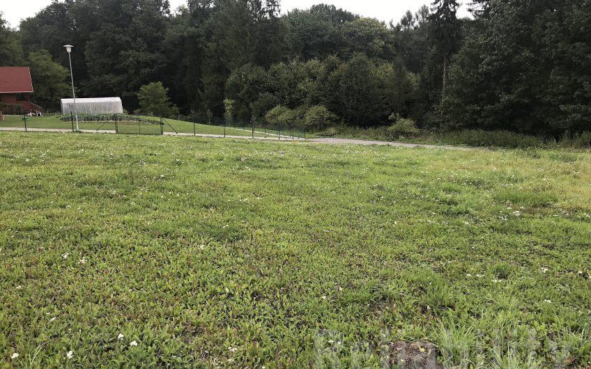 Prodej stavebního pozemku 1363m2